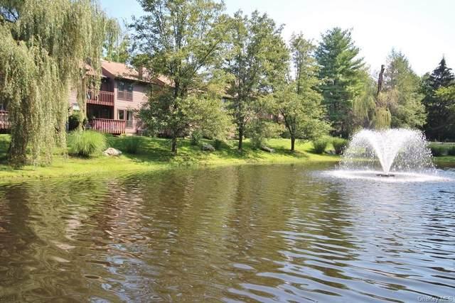 75 Woods Brooke Circle, Ossining, NY 10562 (MLS #H6140351) :: Kendall Group Real Estate | Keller Williams