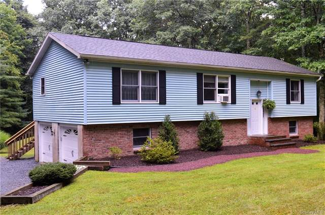 142 Myck Road, Other, PA 18328 (MLS #H6140492) :: Kendall Group Real Estate | Keller Williams