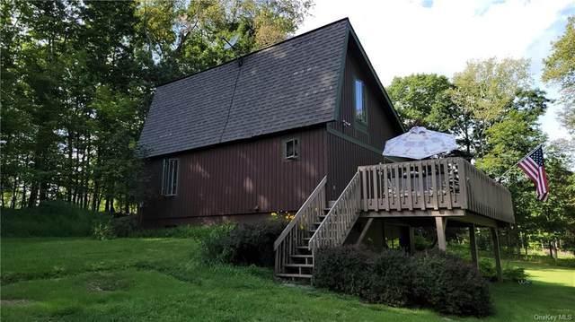 231 Mohn Road, Narrowsburg, NY 12764 (MLS #H6140569) :: Cronin & Company Real Estate