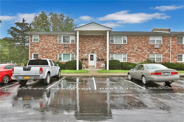 136 N Chestnut Street 13D, New Paltz, NY 12561 (MLS #H6140688) :: Cronin & Company Real Estate