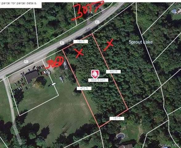 Lot 209727 Route 82, Verbank, NY 12585 (MLS #H6140717) :: Team Pagano