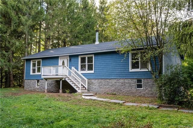 124 Pine Tree Road, Glen Wild, NY 12738 (MLS #H6140785) :: Carollo Real Estate