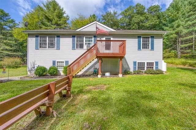 996 County Route 31, Glen Spey, NY 12737 (MLS #H6140964) :: Cronin & Company Real Estate