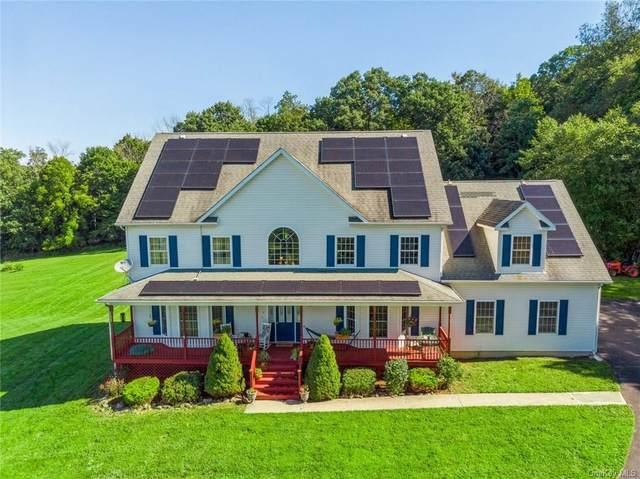 7 Clark Road, Goshen, NY 10924 (MLS #H6140973) :: Cronin & Company Real Estate