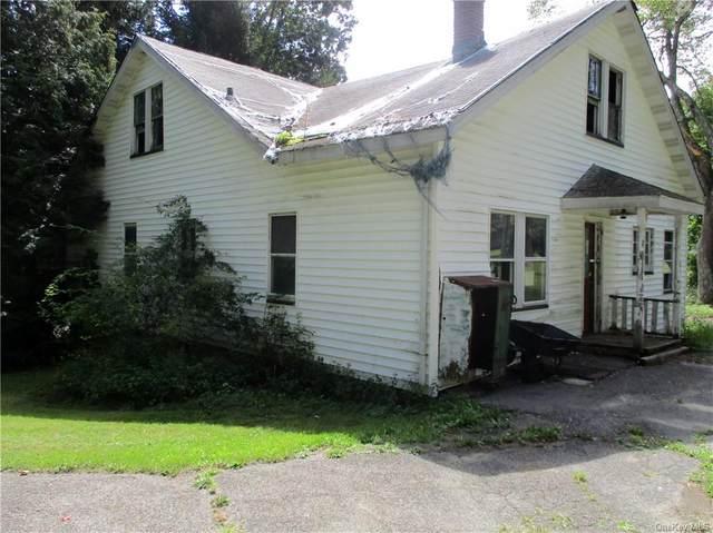 811 State Route 42, Sparrowbush, NY 12780 (MLS #H6140988) :: Goldstar Premier Properties