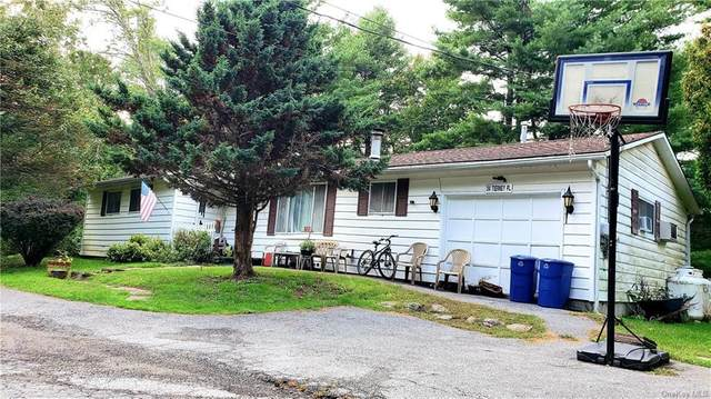 34 Tierney Place, South Fallsburg, NY 12779 (MLS #H6141248) :: Cronin & Company Real Estate