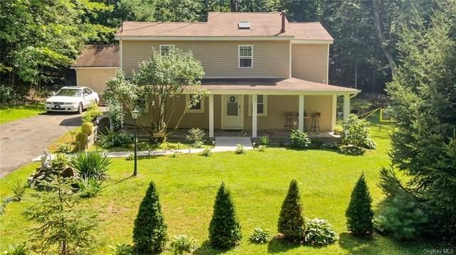 207 Yankee Lake Road, Wurtsboro, NY 12790 (MLS #H6141253) :: Cronin & Company Real Estate