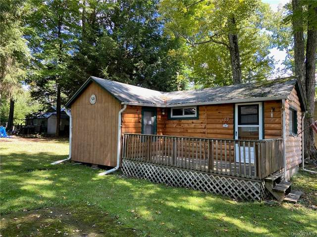 109 W James Avenue, Smallwood, NY 12778 (MLS #H6141313) :: McAteer & Will Estates   Keller Williams Real Estate