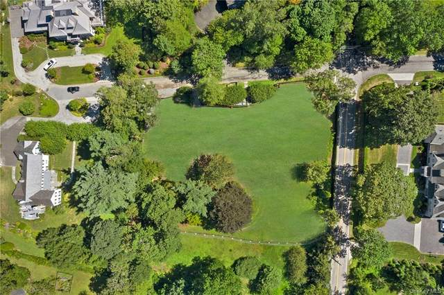 3 Richbell Road, Scarsdale, NY 10583 (MLS #H6141437) :: McAteer & Will Estates | Keller Williams Real Estate