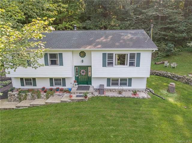 19 Hemlock Hill, New Windsor, NY 12553 (MLS #H6141516) :: Signature Premier Properties