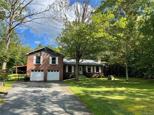 66 Westervelt Road, Cochecton, NY 12726 (MLS #H6141523) :: Cronin & Company Real Estate