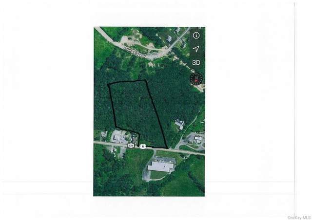 2659 Route 17M Route, Goshen, NY 10924 (MLS #H6141553) :: Cronin & Company Real Estate