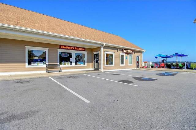 692 County Route 1 Highway, Pine Island, NY 10969 (MLS #H6141599) :: Cronin & Company Real Estate