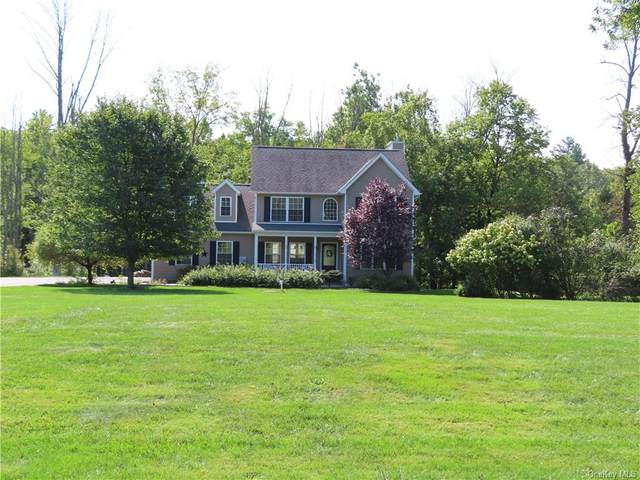 8 Mill House Road, Pine Bush, NY 12566 (MLS #H6141681) :: Cronin & Company Real Estate