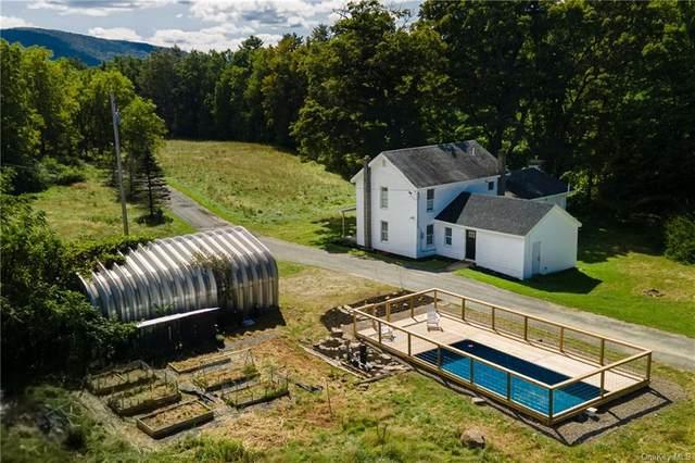 189 Tice Road, Spring Glen, NY 12483 (MLS #H6141685) :: Cronin & Company Real Estate
