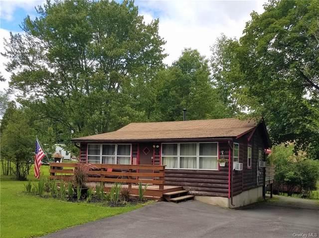 51 E Oak Street, Smallwood, NY 12778 (MLS #H6141698) :: McAteer & Will Estates   Keller Williams Real Estate