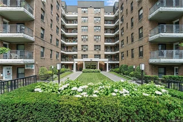 16 N Broadway 1H, White Plains, NY 10601 (MLS #H6141754) :: McAteer & Will Estates | Keller Williams Real Estate