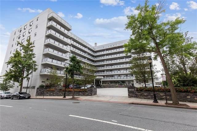 300 Martine Avenue 2C, White Plains, NY 10601 (MLS #H6141774) :: Carollo Real Estate