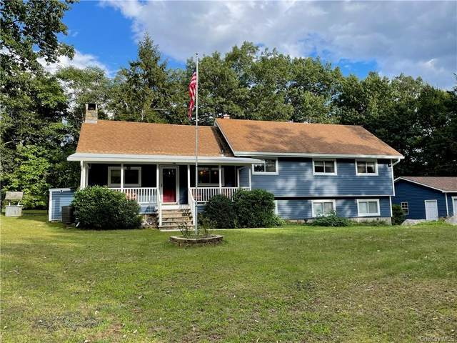 20 Old Road Trail, Putnam Valley, NY 10579 (MLS #H6141777) :: Team Pagano