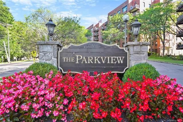 119 S Highland Avenue 6D, Ossining, NY 10562 (MLS #H6141783) :: Goldstar Premier Properties