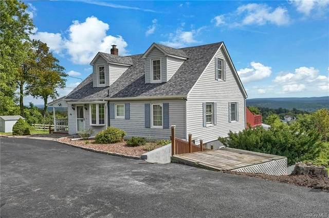 320 Carter Avenue, Newburgh, NY 12550 (MLS #H6141810) :: Carollo Real Estate