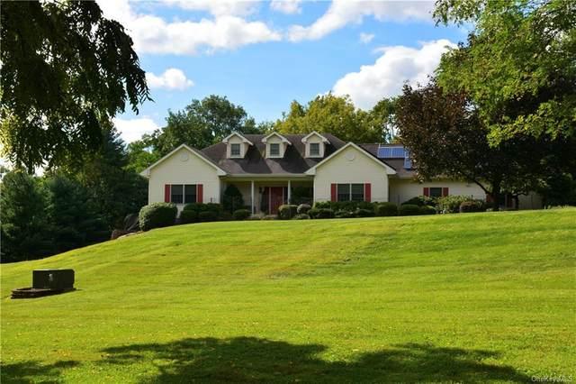 17 Mark Street, New Windsor, NY 12553 (MLS #H6141868) :: Cronin & Company Real Estate