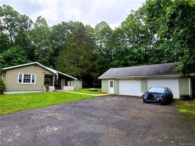 335 Spadola Lane, Pine Bush, NY 12566 (MLS #H6141880) :: Cronin & Company Real Estate