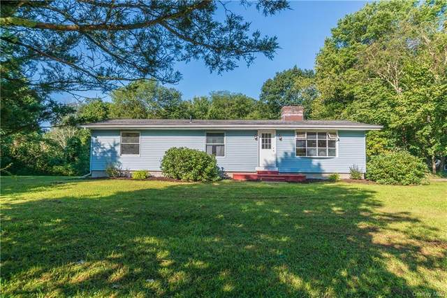 573 N Quaker Lane, Hyde Park, NY 12538 (MLS #H6141933) :: Goldstar Premier Properties