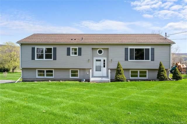 38 Rose Street, Poughquag, NY 12570 (MLS #H6142019) :: Goldstar Premier Properties
