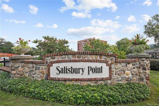1 Salisbury Point 3A, Nyack, NY 10960 (MLS #H6142033) :: McAteer & Will Estates   Keller Williams Real Estate