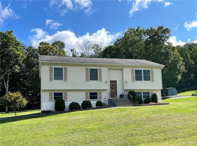 30 Black Rock Trail, Port Jervis, NY 12771 (MLS #H6142107) :: Goldstar Premier Properties