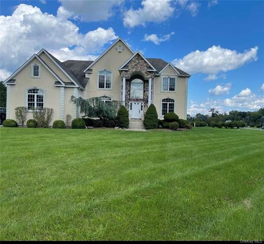 3 Kings Drive, Middletown, NY 10941 (MLS #H6142156) :: McAteer & Will Estates | Keller Williams Real Estate