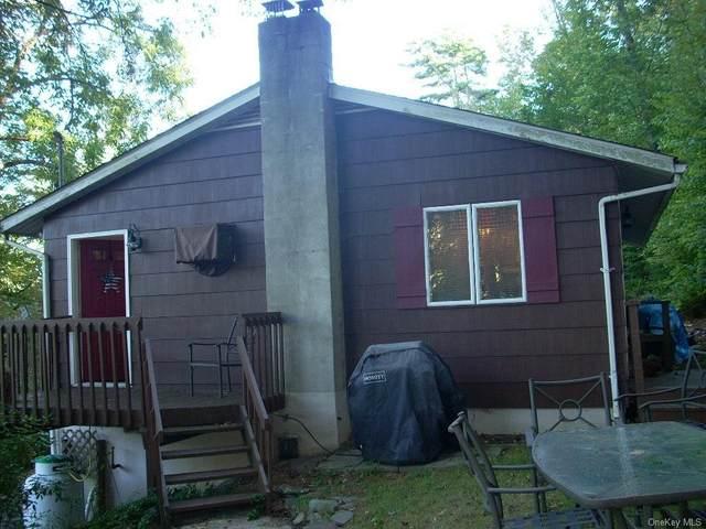 217 Sullivan Street, Wurtsboro, NY 12790 (MLS #H6142261) :: Cronin & Company Real Estate