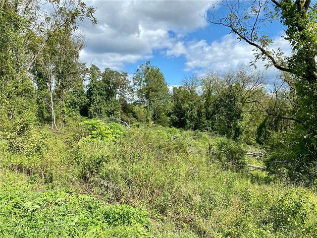 80 Fishkill Hook Road, Hopewell Junction, NY 12533 (MLS #H6142293) :: Kendall Group Real Estate | Keller Williams
