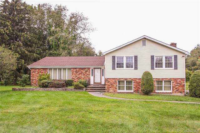 99 Sunny Lane, Stormville, NY 12582 (MLS #H6142352) :: The Clement, Brooks & Safier Team