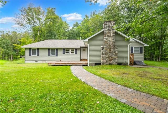 2490 County Route 1, Westtown, NY 10998 (MLS #H6142436) :: Corcoran Baer & McIntosh
