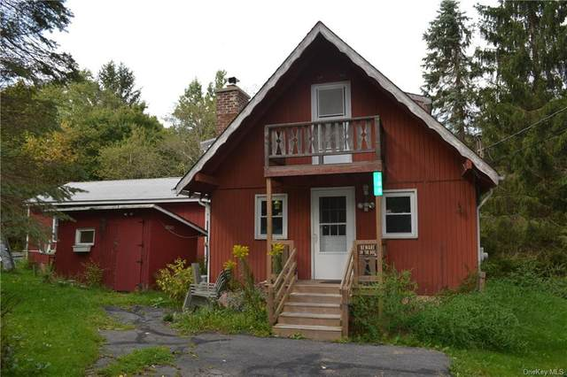 102 Wedemeyer Road, Downsville, NY 13755 (MLS #H6142438) :: Cronin & Company Real Estate