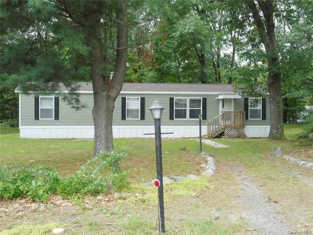 15 Carpenter Road, Port Jervis, NY 12771 (MLS #H6142493) :: Goldstar Premier Properties