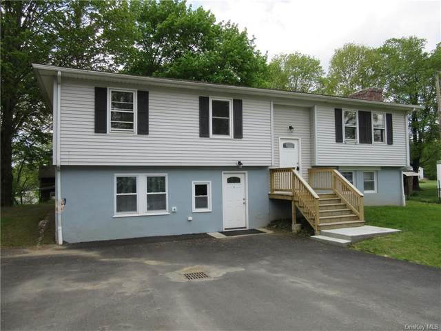 12 Summer Street, Dover Plains, NY 12522 (MLS #H6142518) :: Goldstar Premier Properties