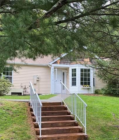 82 Hidden Ridge Drive, Monticello, NY 12701 (MLS #H6142584) :: Goldstar Premier Properties