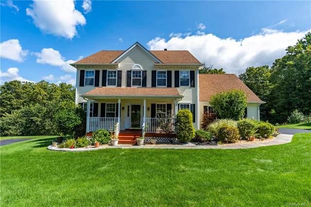 125 Van Scoy Road, Poughquag, NY 12570 (MLS #H6142595) :: Goldstar Premier Properties