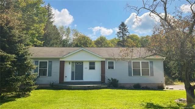 586 Skipperene Road, Narrowsburg, NY 12764 (MLS #H6142633) :: Cronin & Company Real Estate