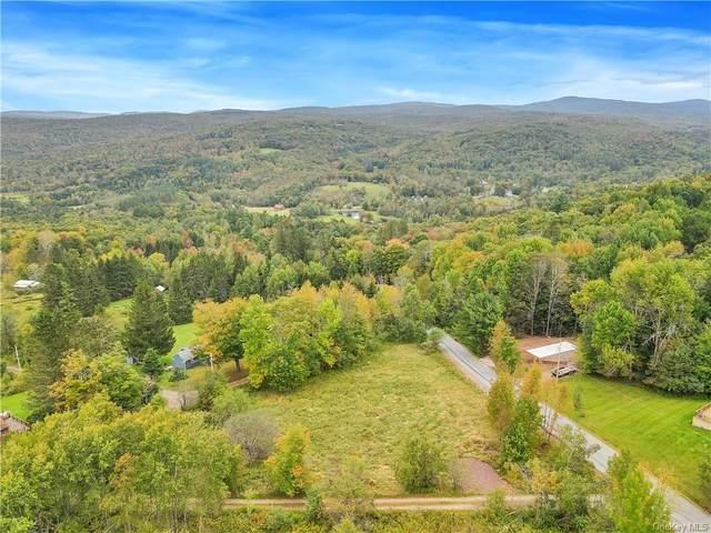 37 Hunter Lake Road, Parksville, NY 12768 (MLS #H6142641) :: Cronin & Company Real Estate