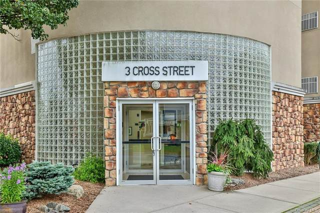 3 Cross Street #114, Suffern, NY 10901 (MLS #H6142657) :: Signature Premier Properties