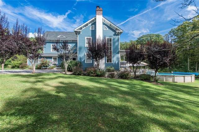 332 SE Mountain Road, Wingdale, NY 12594 (MLS #H6142661) :: Goldstar Premier Properties