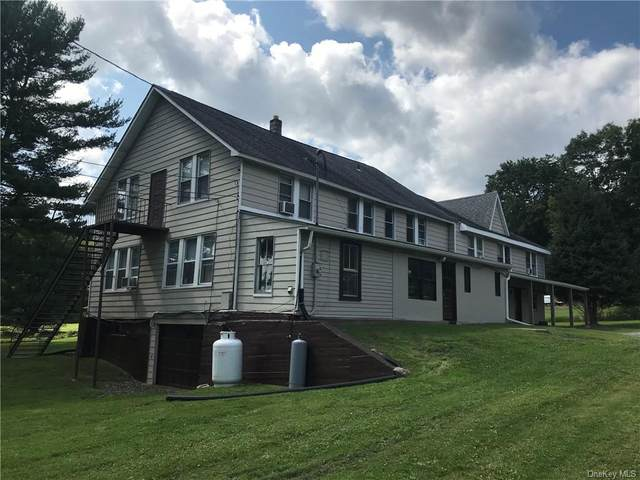 751 State Route 42, Sparrowbush, NY 12780 (MLS #H6142695) :: Goldstar Premier Properties