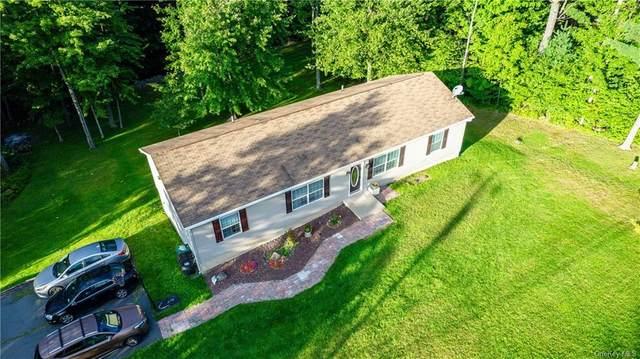 148 Mt Prosper Road, Wurtsboro, NY 12790 (MLS #H6142797) :: Kendall Group Real Estate | Keller Williams