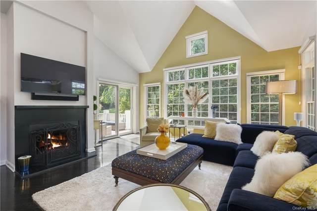 2 Alfred Court, Rye Brook, NY 10573 (MLS #H6142834) :: Goldstar Premier Properties