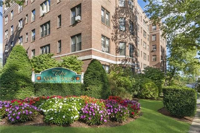 11 Alden Road 6L, Larchmont, NY 10538 (MLS #H6142854) :: Cronin & Company Real Estate