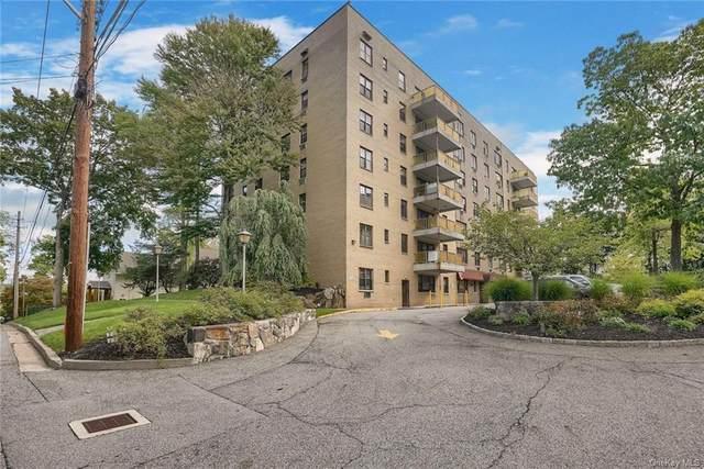 25 Stewart Place #212, Mount Kisco, NY 10549 (MLS #H6142858) :: Kendall Group Real Estate | Keller Williams